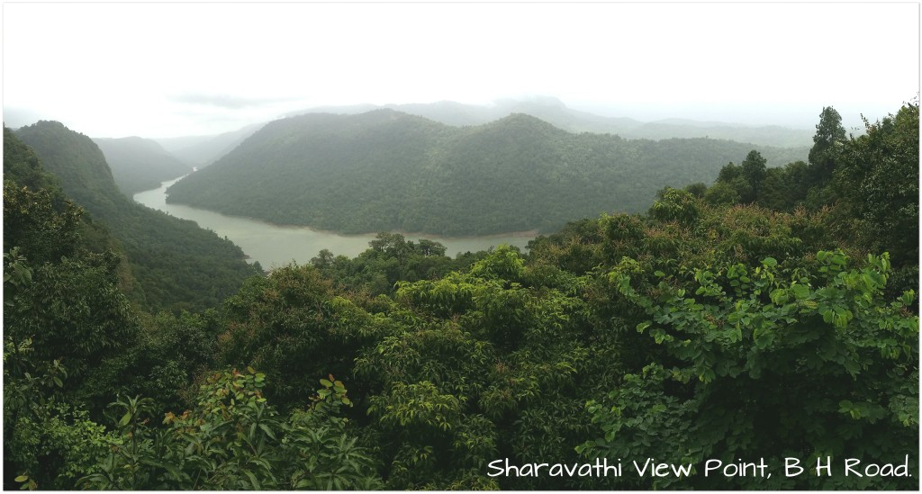 Sharavathi View